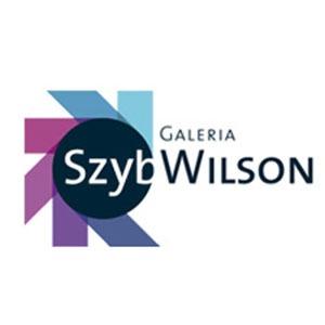 szyb-wilsona